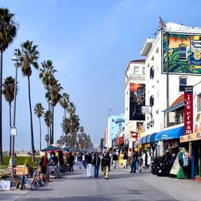 Venice Beach is listed (or ranked) 7 on the list The Top Must-See Attractions in Los Angeles