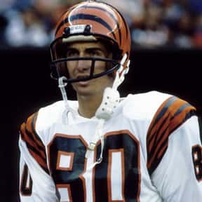 Cris Collinsworth is listed (or ranked) 15 on the list The Best Cincinnati Bengals of All Time