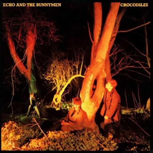 Crocodiles (bonus disc) is listed (or ranked) 4 on the list The Best Echo & The Bunnymen Albums of All Time