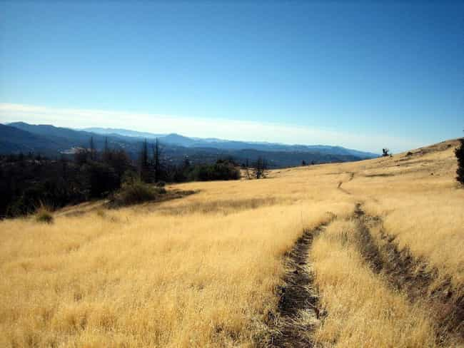 Cuyamaca Rancho State Park is listed (or ranked) 1 on the list The Best Camping Spots in Southern California
