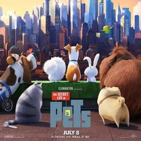 The Secret Life of Pets is listed (or ranked) 8 on the list The Best Cat Movies