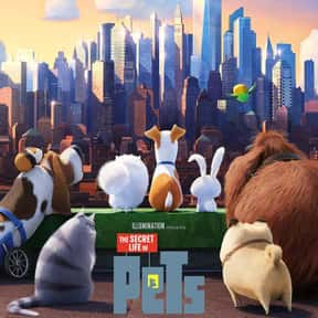 The Secret Life of Pets is listed (or ranked) 2 on the list The Best Cat Movies for Kids