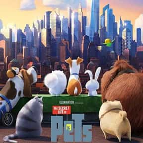 The Secret Life of Pets is listed (or ranked) 14 on the list The Best Kevin Hart Movies
