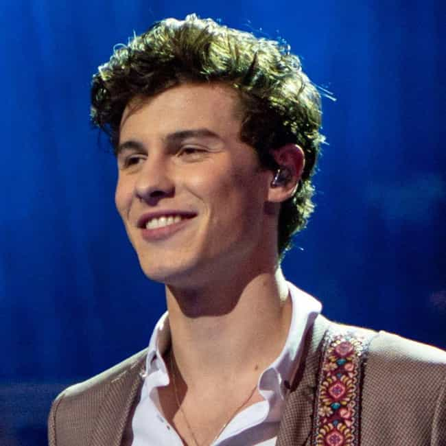 Shawn Mendes is listed (or ranked) 1 on the list The Hottest Male Singers