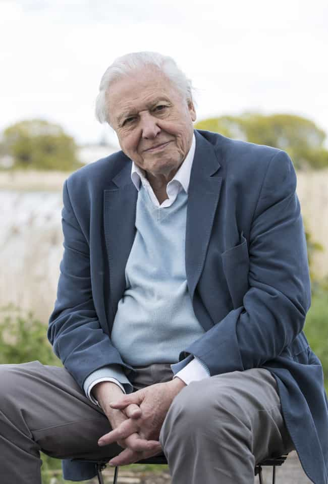 David Attenborough is listed (or ranked) 3 on the list Famous People who Majored in Natural Science
