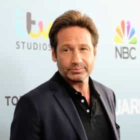 david duchovny rankings amp opinions