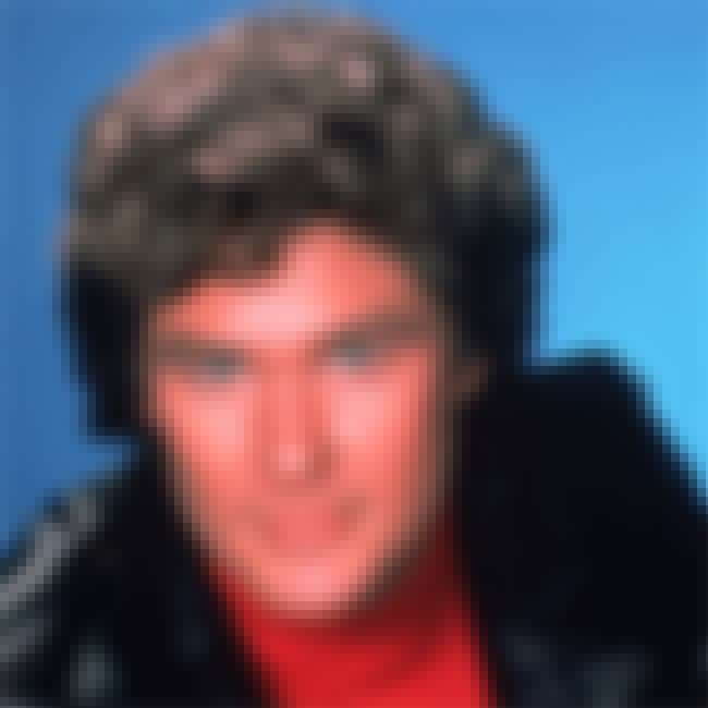 David Hasselhoff is listed (or ranked) 8 on the list The Craziest Things Celebrities Have Done While Drunk