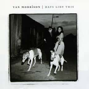 Days Like This is listed (or ranked) 21 on the list The Best Van Morrison Albums of All Time
