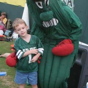 Delta State University is listed (or ranked) 4 on the list Universities With The Dumbest College Mascots