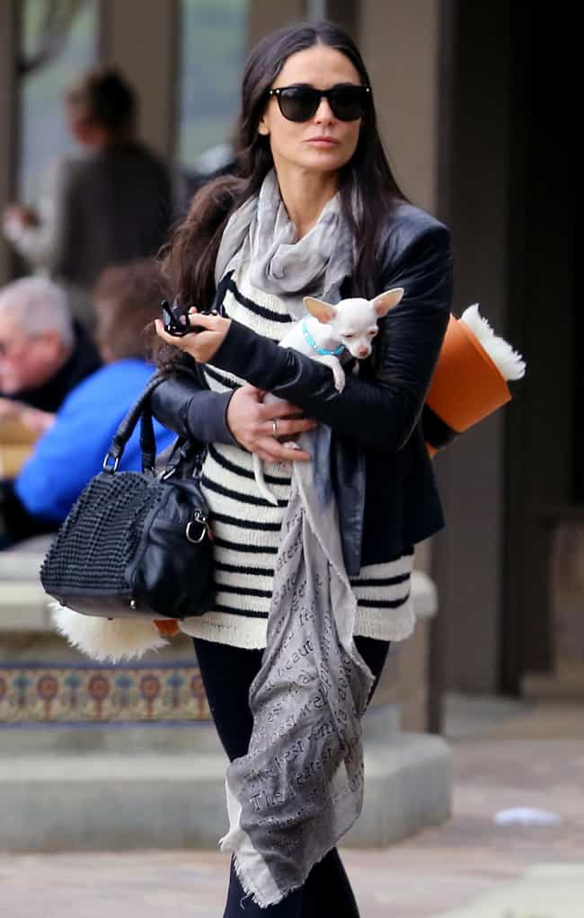 Demi Moore is listed (or ranked) 2 on the list 25 Celebrities Who Have Chihuahuas