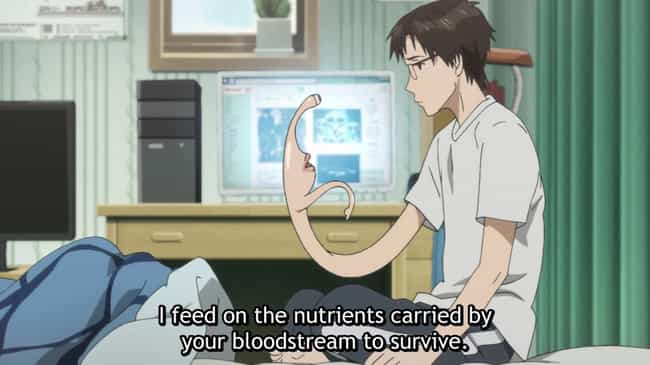 Parasyte: The Maxim is listed (or ranked) 3 on the list The 15 Best Action Anime on Crunchyroll