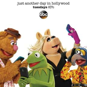 The Muppets is listed (or ranked) 6 on the list The Best Puppet TV Shows