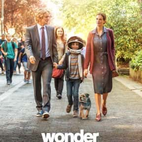 Wonder is listed (or ranked) 2 on the list The Best Movies On Hulu Right Now