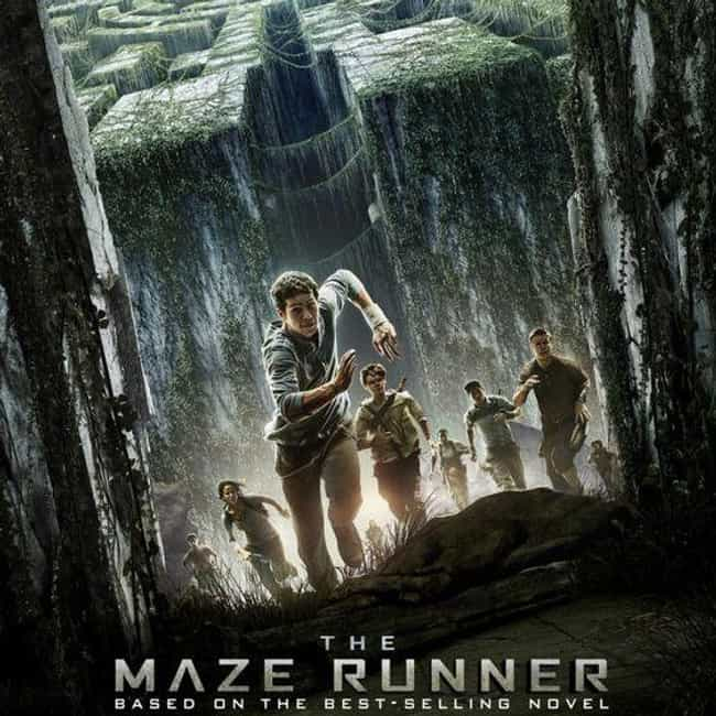 Maze Runner Franchise is listed (or ranked) 2 on the list What to Watch If You Love The Hunger Games