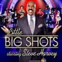 Little Big Shots is listed (or ranked) 13 on the list The Best TV Shows the Whole Family Can Enjoy Since 2015