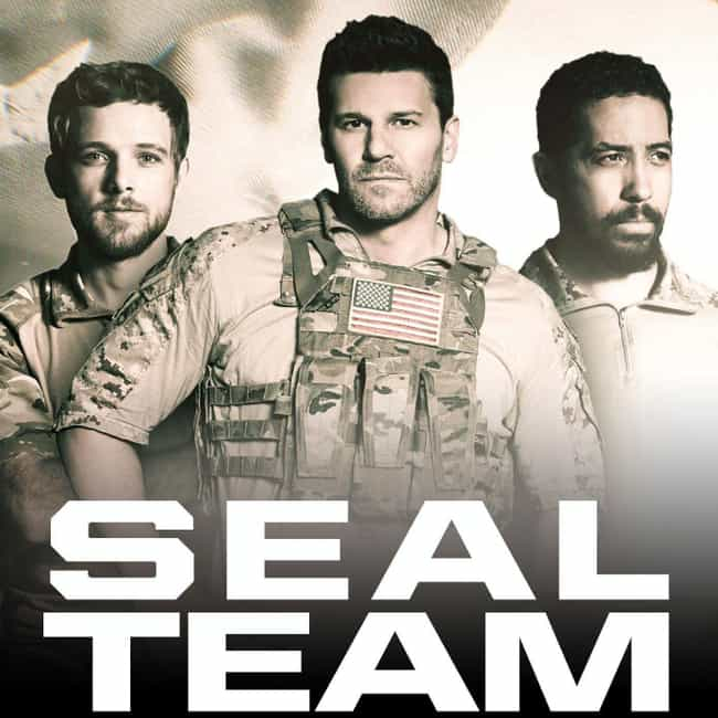 SEAL Team is listed (or ranked) 3 on the list What to Watch If You Love 'Chicago Fire'
