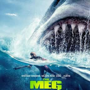 The Meg is listed (or ranked) 9 on the list The Scariest Ship Horror Movies Set on the Sea