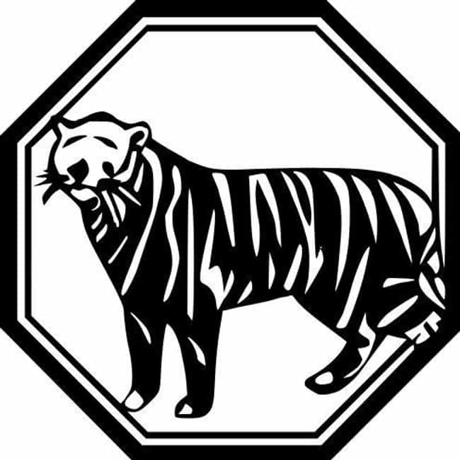 Tiger (Zodiac) is listed (or ranked) 3 on the list Find Out Your Chinese Zodiac Sign And What It Says About You