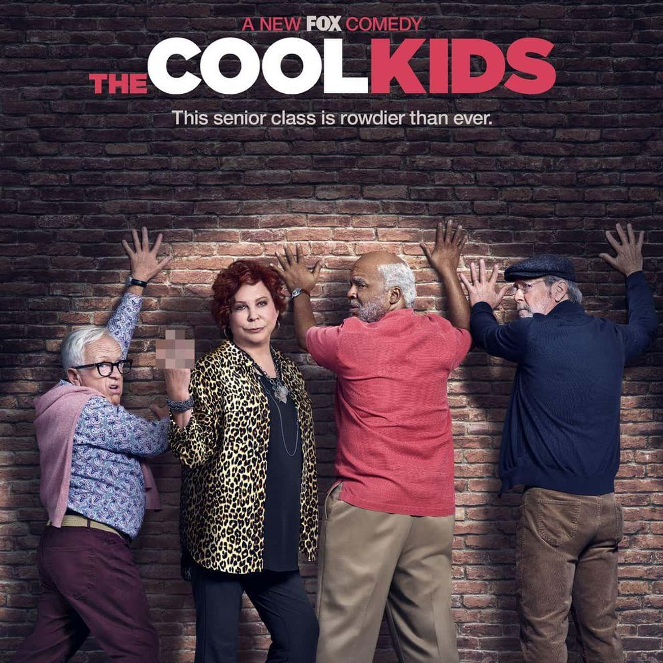 The Cool Kids is listed (or ranked) 2 on the list The Greatest TV Shows About Retirement