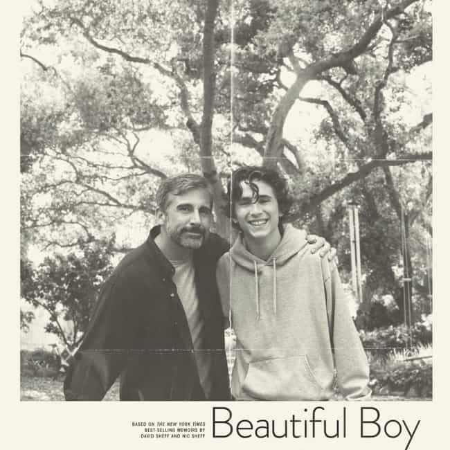 Beautiful Boy is listed (or ranked) 2 on the list The Best Kaitlyn Dever Movies