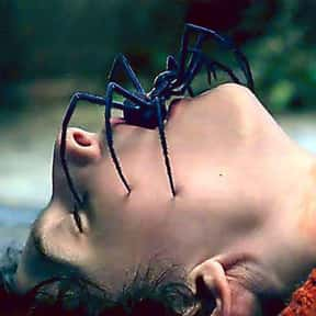 The Turning is listed (or ranked) 16 on the list Movies That Have Spiders In Them