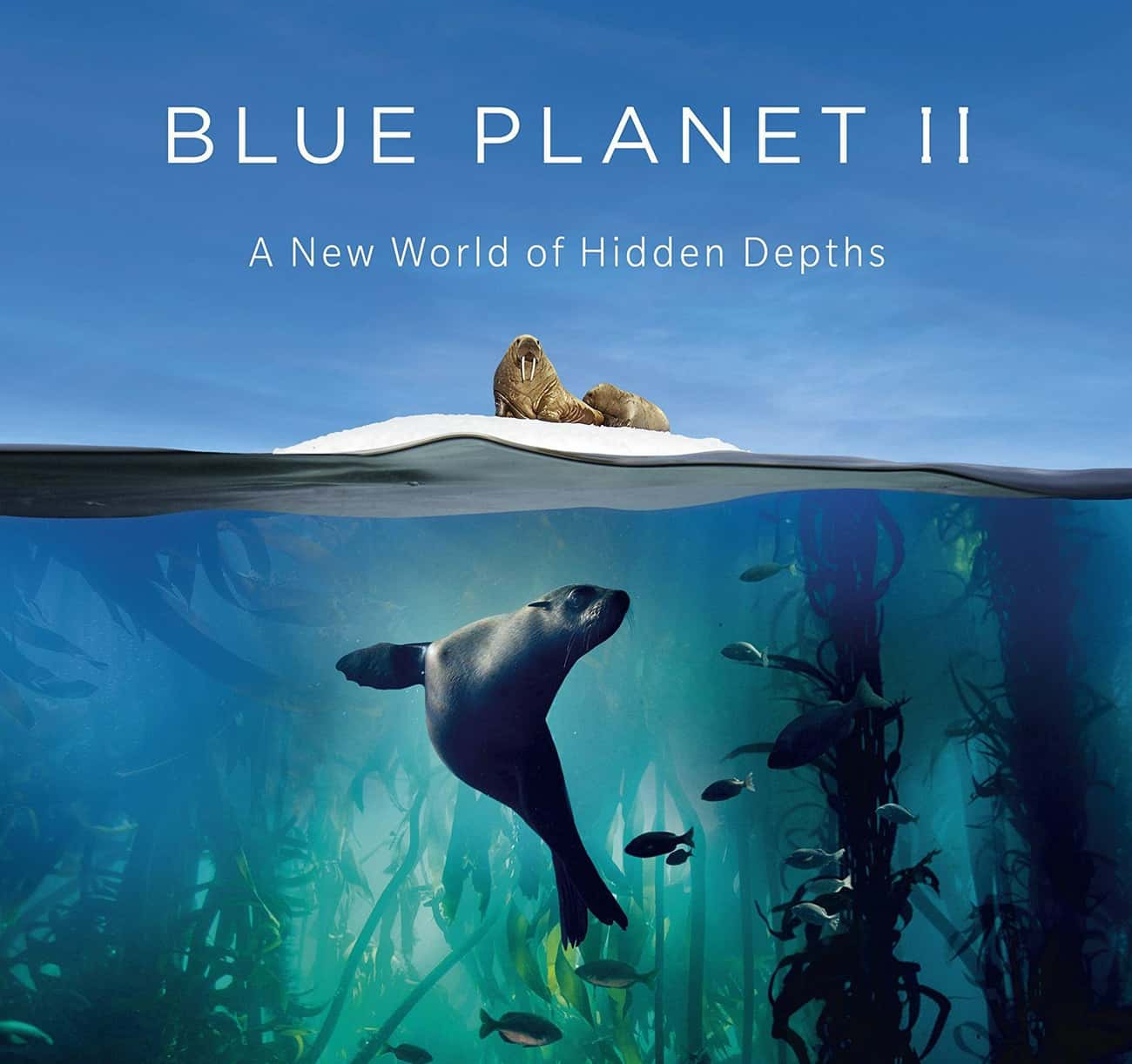 Blue Planet II is listed (or ranked) 1 on the list The Best Oceanic Documentary Series