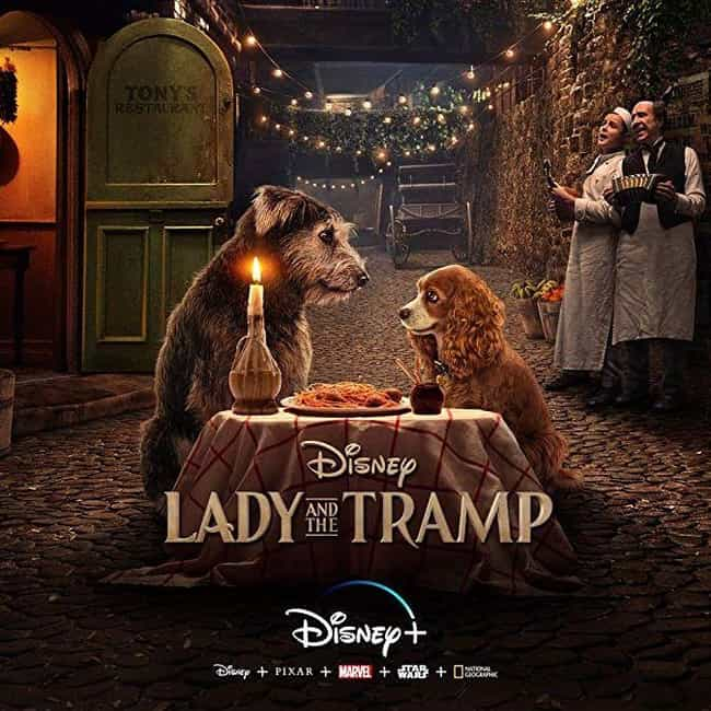 Lady and the Tramp is listed (or ranked) 3 on the list The Best Disney Live-Action Remakes Of The Last Few Years, Ranked