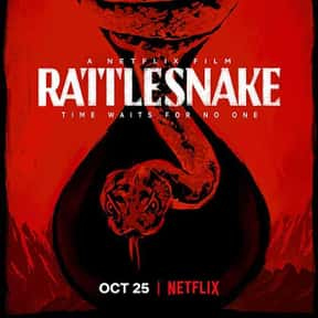 Rattlesnake is listed (or ranked) 15 on the list The Best Netflix Original Thriller Movies