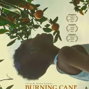 Burning Cane is listed (or ranked) 23 on the list The Best Mother-Son Movies Ever Made
