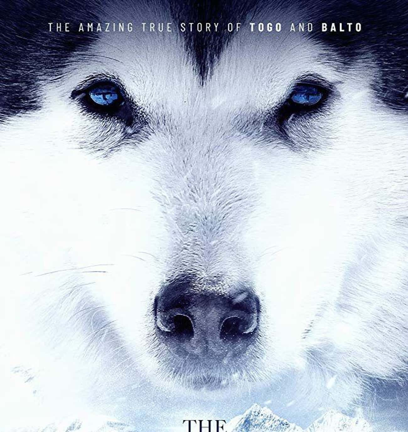 The Great Alaskan Race is listed (or ranked) 3 on the list The Best Survival Movies Based on True Stories