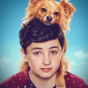 The Healing Powers of Dude is listed (or ranked) 17 on the list Good TV Shows for Tweens