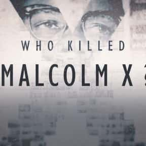 Who Killed Malcolm X? is listed (or ranked) 19 on the list The Best New Netflix Original Series of the Last Few Years