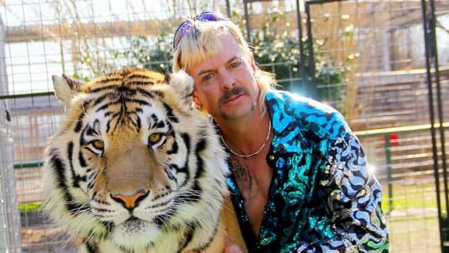 Tiger King: Murder, Mayh... is listed (or ranked) 1 on the list 15 Wonderfully Weird Documentaries On Netflix