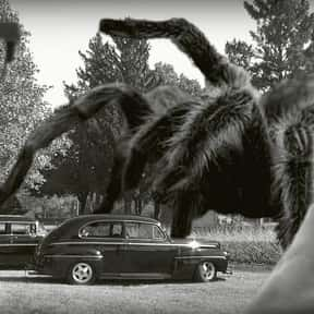 Earth vs. the Spider is listed (or ranked) 14 on the list Movies That Have Spiders In Them