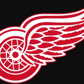Detroit Red Wings is listed (or ranked) 13 on the list The Best Sports Teams Not Named After Animals