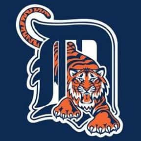 Detroit Tigers is listed (or ranked) 15 on the list Baseball Teams With The Most Annoying Fans