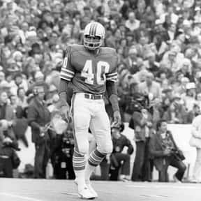 Dick Anderson is listed (or ranked) 16 on the list The Best NFL Players From Michigan