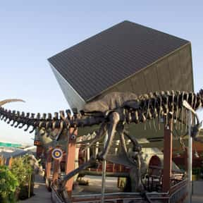 Discovery Science Foundation & is listed (or ranked) 16 on the list The Best Children's Museums in the World