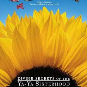 Divine Secrets of the Ya-Ya Si is listed (or ranked) 19 on the list The Best Sandra Bullock Movies