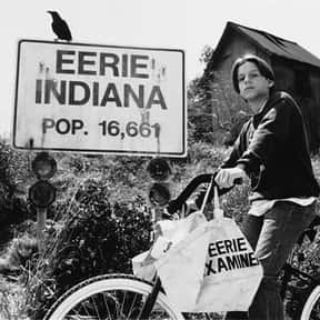 Eerie, Indiana is listed (or ranked) 18 on the list The Best Shows Canceled After a Single Season