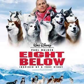 Eight Below is listed (or ranked) 9 on the list The Greatest Dog Movies Of All Time