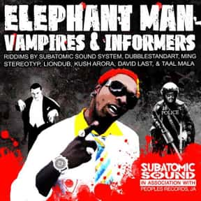 Elephant Man is listed (or ranked) 16 on the list The Best Reggae Fusion Bands/Artists