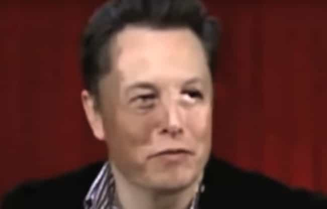 Elon Musk is listed (or ranked) 2 on the list Famous People Suspected Of Being Shapeshifting Reptilian Elites