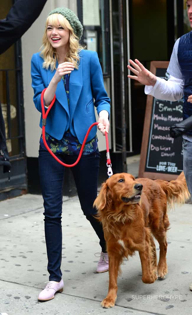 Emma Stone is listed (or ranked) 8 on the list The Best Photos of Celebrities Walking Their Dogs