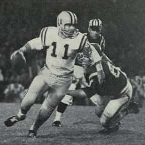 Lynn Amedee is listed (or ranked) 25 on the list The Best LSU Tigers Quarterbacks Of All Time