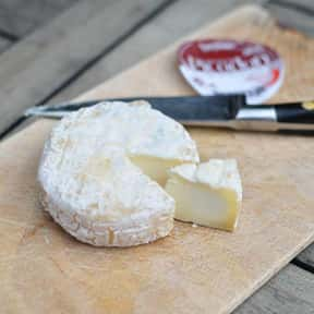 Picodon is listed (or ranked) 10 on the list The Best Semi-Soft Cheese