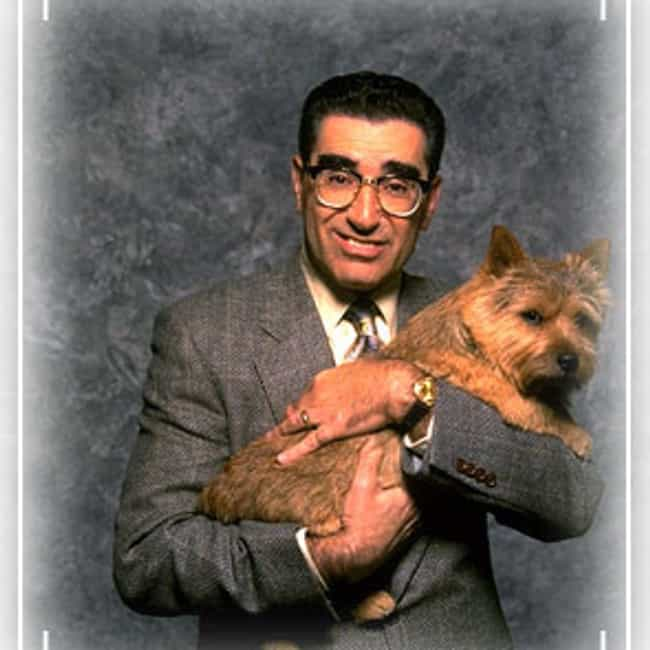 Eugene Levy is listed (or ranked) 4 on the list Actors in the Most Christopher Guest Movies