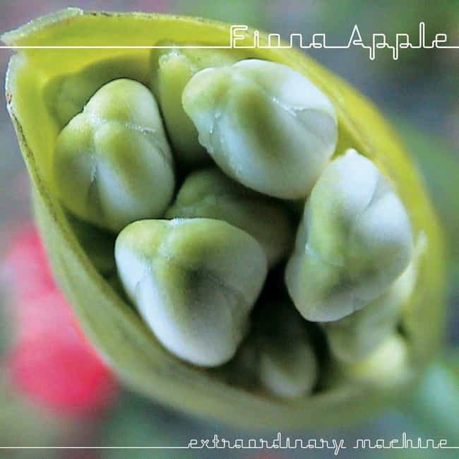 Extraordinary Machine is listed (or ranked) 4 on the list The Best Fiona Apple Albums, Ranked