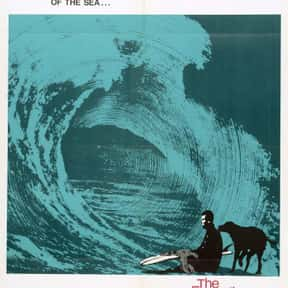 The Fantastic Plastic Machine is listed (or ranked) 5 on the list Catch A Wave With The Best Documentaries About Surfing