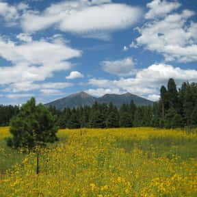 Flagstaff is listed (or ranked) 9 on the list The Best US Cities for Nature Lovers